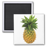 Pineapple 2 Inch Square Magnet
