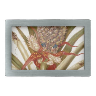 Pineapple and cockroaches by Maria Sibylla Merian Rectangular Belt Buckle