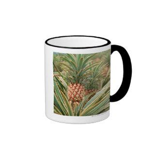 Pineapple Field Coffee Mug