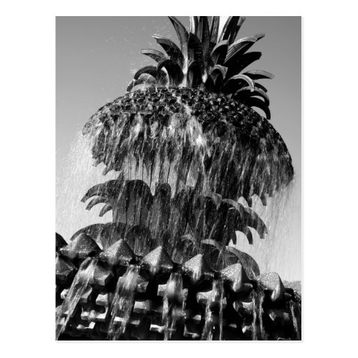 Pineapple Fountain Postcard