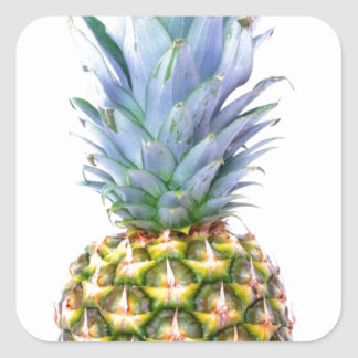 Pineapple Fruit Beach Dessert Colorful Tropical Square Sticker