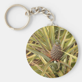 Pineapple in Paradise Keychain