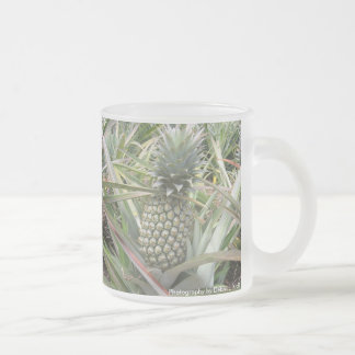 Pineapple Juice - Updated 10 Oz Frosted Glass Coffee Mug