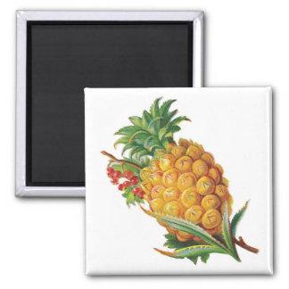 Pineapple Magnet