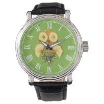 Pineapple owl watch