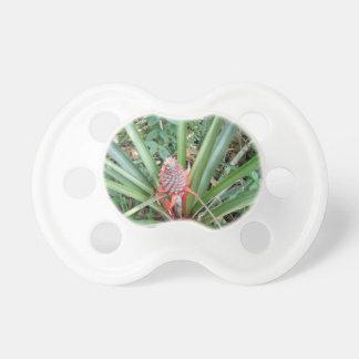 pineapple BooginHead pacifier