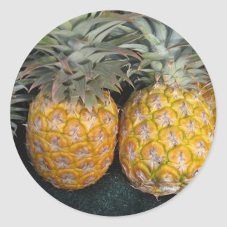Pineapple Paradise Classic Round Sticker