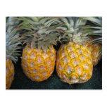 Pineapple Paradise Postcard