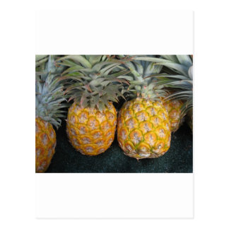 Pineapple Paradise Post Cards