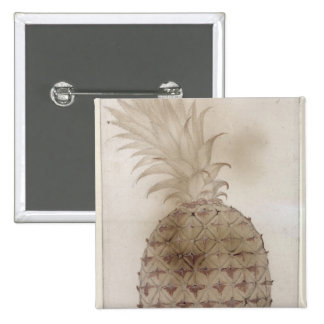 Pineapple, Pinback Button