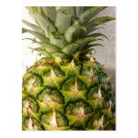 Pineapple Pretty Postcard