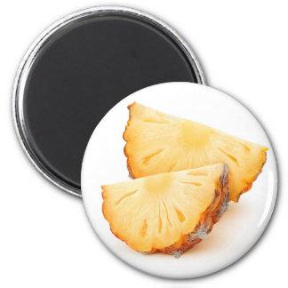 Pineapple slices magnet