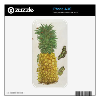 Pineapple with caterpillar and butterflies (hand-c skins for the iPhone 4S