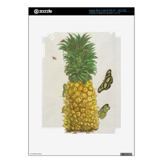 Pineapple with caterpillar and butterflies (hand-c skins for iPad 3