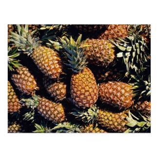 Pineapples, Tulum, Mexico Postcard