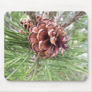 pinecone array mouse pad