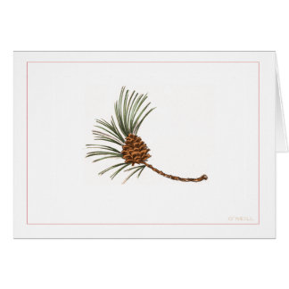 """""""Pinecone"""" by Gerry O'Neill Card"""