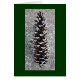 Pinecone Greeting Card