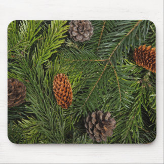 Pinecone Close up Mouse Pad