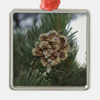 pinecone adornos de navidad