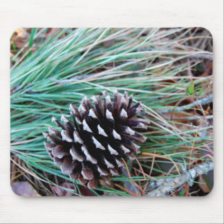 Pinecone on pineneedles mousepad