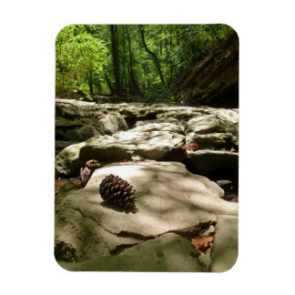 Pinecone Path flexible stickers Magnet