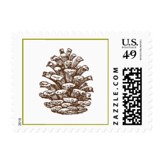 Pinecone Postage Stamp