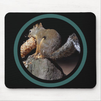 Pinecone Squirrel - Multi Frame Mouse Pad
