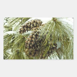 PInecones in Snow Rectangle Sticker