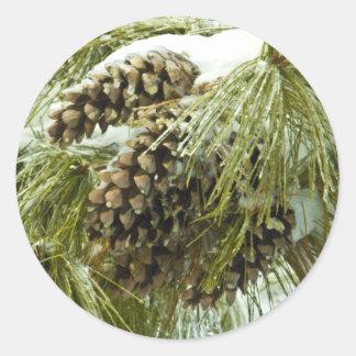 Pinecones in Snow Round Sticker