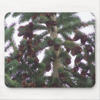 Pinecones On The Tree Mouse Pad
