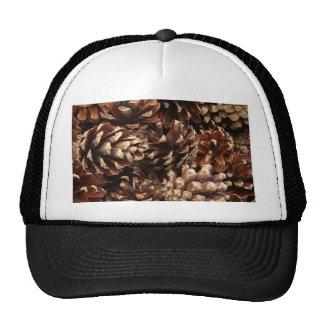 pinecones, por todas partes gorros bordados