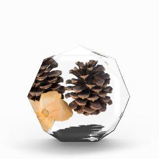 PineconesDriedFlower061315.png Acrylic Award