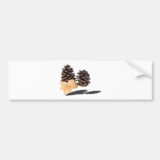 PineconesDriedFlower061315.png Bumper Sticker