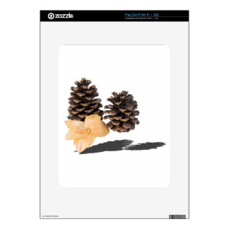 PineconesDriedFlower061315.png Decal For iPad