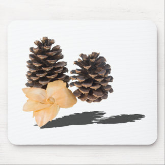 PineconesDriedFlower061315.png Mouse Pad