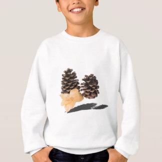 PineconesDriedFlower061315.png Sweatshirt