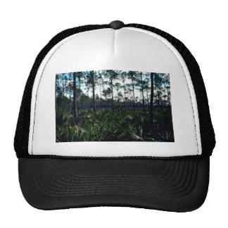 Pinelands Mesh Hats