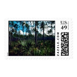 Pinelands Postage Stamp