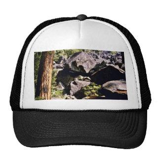 Pines And Glacial Debris Yosemite Valley Trucker Hat