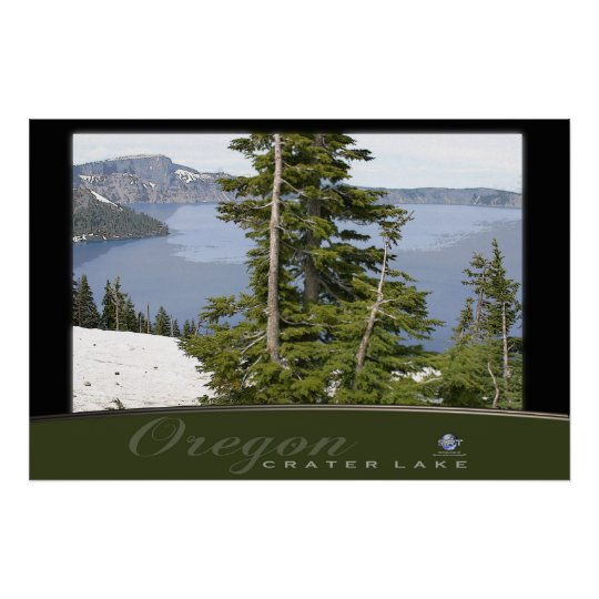 PINES AT CRATER LAKE POSTER