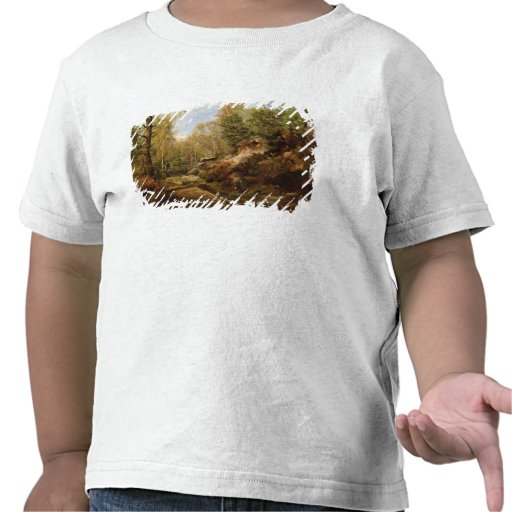 Pines & Birch Trees or The Forest of Tshirts