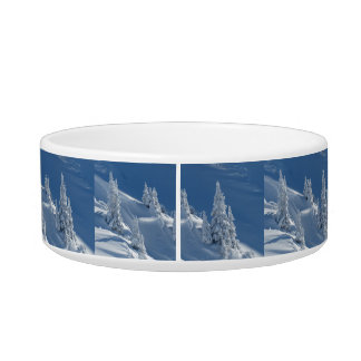 Pines Covered with Snow Bowl