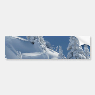 Pines Covered with Snow Bumper Sticker