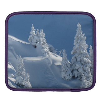Pines Covered with Snow iPad Sleeves