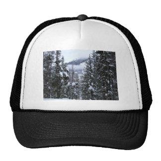 Pines Trucker Hat