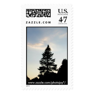 Pinetree Silhouette 1st class postage