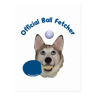 Ping Pong Ball Fetcher Dog Postcard