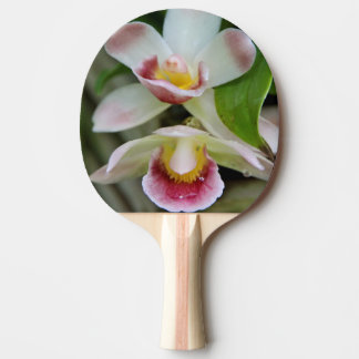 Ping Pong Paddle - Fan Shaped Orchid