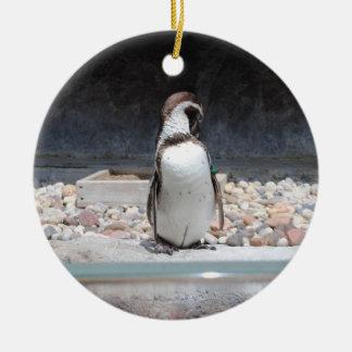 Pingüino Adorno Navideño Redondo De Cerámica